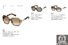 DSquared Sunglasses DQ 0039
