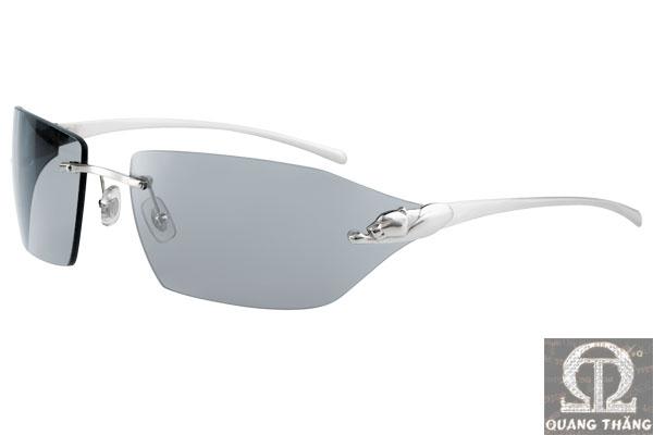 Cartier sunglasses T8200615