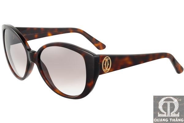 Cartier sunglasses T8200792