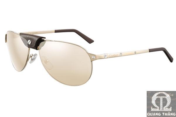 Cartier sunglasses T8200853