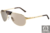 Cartier sunglasses T8200630