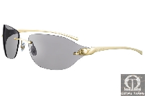 Cartier sunglasses T8200696