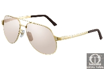 Cartier sunglasses T8200746