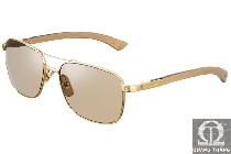 Cartier sunglasses T8200782