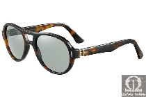 Cartier sunglasses T8200818