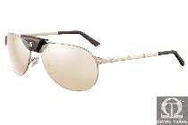 Cartier sunglasses T8200853